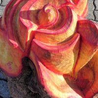 Rose2_web
